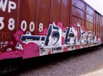 WP 38008