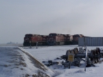 Three Westbound Trains Line Up and Wait During a Performance on the CP Holiday Train