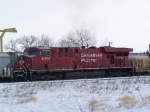 CP 8788 Chills Out on a Cold North Dakota Day