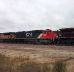CN 5460