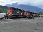 CN invasion