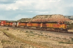 Stack train rolls west