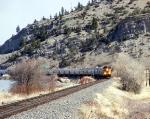 BNSF on the MRL in Springdale, MT