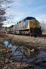 CSX 392 is reflected in a bit of a swamp