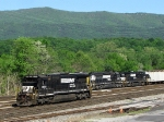 NS 8693, NS 3288 & NS 3556 in the yard