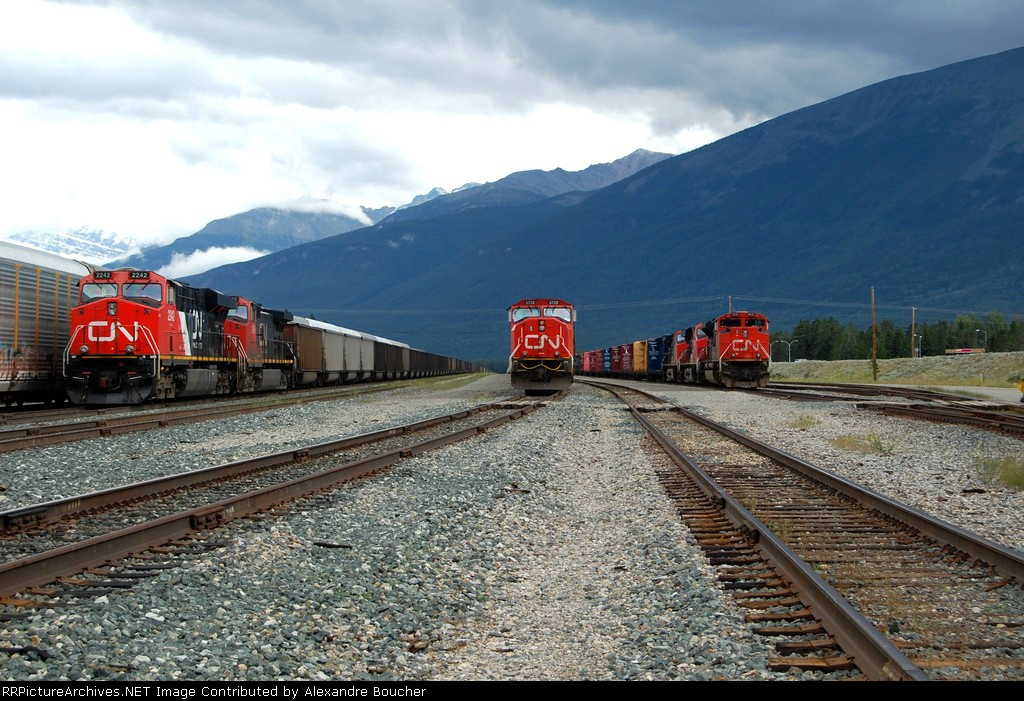 3 CN freight trains