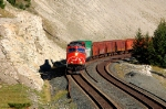 CN general freight