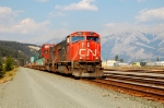 CN intermodal into yard
