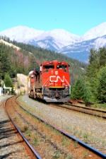 a CN train at Jasper east