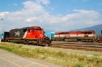 CN general freight meet CN test train