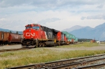 CN intermodal train