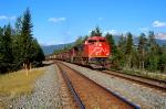 CN grain train starting on Jasper yard