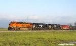 BNSF 7039, NS 8131, & NS 8021