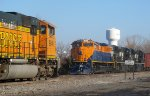 NS 1071 Orange on Orange
