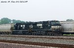 NS 9533 & NS 6662 lead NS 301