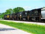 NS 2503, HLCX 5947, NS 8977, NS 8823, NS 8916, NS 9125, & NS 2638 lead NS 32Q