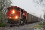 CN 8925 leads NS 426