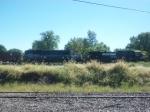 NS 9487 & GMTX 9057