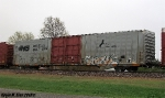 Thoroughbred Gray Boxcar on NS 32Q