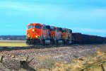 BNSF 5918, BNSF 6398, & BNSF 9903 lead U-MADALL005T