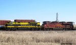 NS 1069 & NS 8104 lead 168