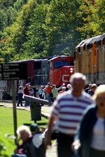 The meet in Agawa Canyon