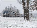 Amtrak 351 cools its' heels as a light snow falls