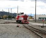 TRMW 1203