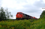 CN 121 at St-Apollinaire