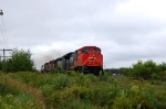 CN 310, 2 great engin on this train, gray CN and full body cab 5533