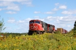 cn 401 at my home, st-apollinaire