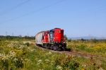 CN 521 has been taken on Monk spur  at the east of CN Joffre yard(Charny, QC)