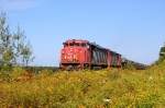 CN 753. This is a extra army train. It very rare to see that!