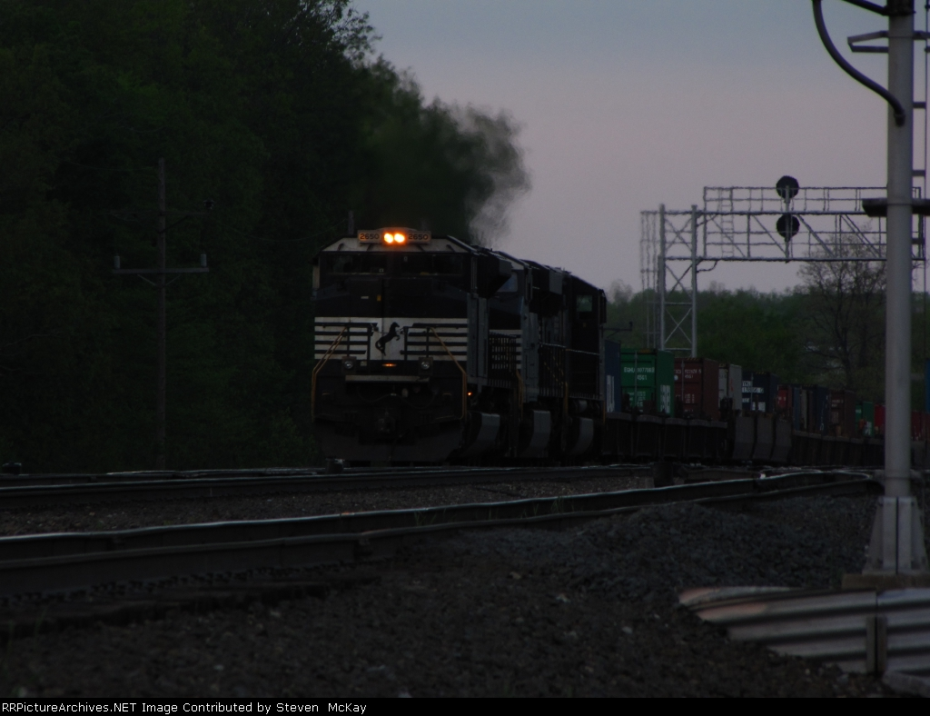 NS 2650