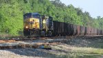 CSXT 109 Leads a Northbound Empty Coal Train