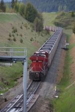 CP Coal Spray