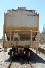 CEFX 50243