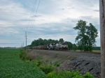 NS 8897 Leads Coal Empties West
