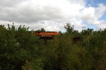 BNSF 5874, GE ES44AC, we have street running, how about tree top running? On the Iowa side of the Missouri River