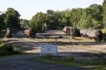 G&O's Three Notch RR yard