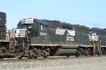 NS 5651