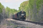 NS 6561 in the woods