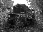 SOU 1004 rusting away in the brush.
