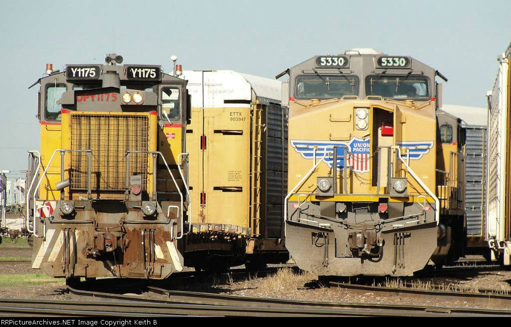 UPY 1175 and 5330