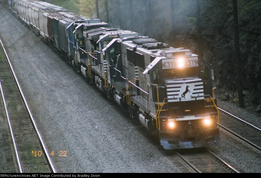 NS 6319, 6310, 9579,8769, and 5299
