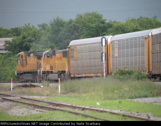 NS 281 Twisting His Way Through