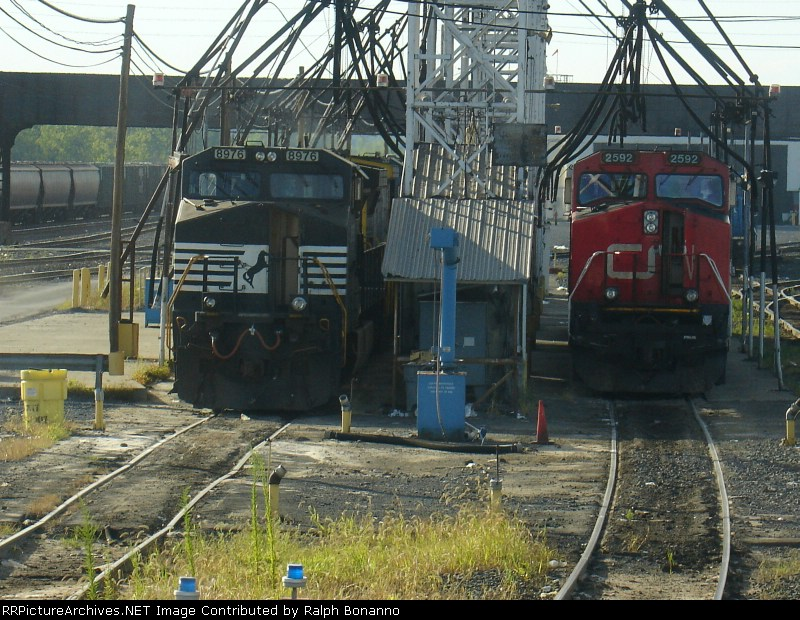 Northern and Southern visitors meet on the pit tracks