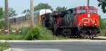 CN 2558