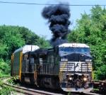NS 8391