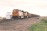 Loaded coal train prepares to do 180